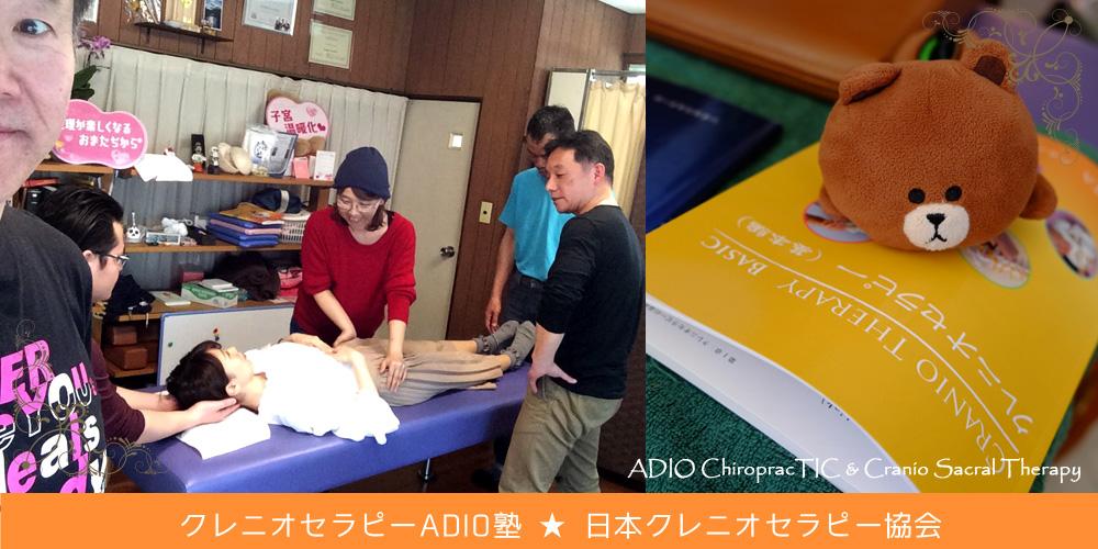 クレニオセラピー@ADIO塾 <仙台からの新しい入塾生も参加! ☆ ADIO Straight Chiropractic & Cranio Sacral Therapy>